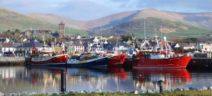medium_dingle_harbour16_july_2013_018